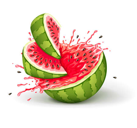 Juicy ripe watermelon cuts with splashes of juice drops. Eps10 vector illustration.  Illustration