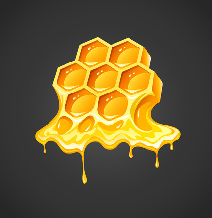 outflow: Honey in honeycombs.