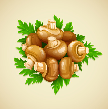 ready cooked: Organic food mushrooms champignons with green parsley. Eps10 vector illustration. Isolated on white background
