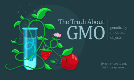 inquest: GMO genetically modified fruits growing in test tube. Eps10 vector illustration