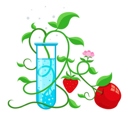 inquest: GMO genetically modified foods growing in test-tube. Eps10 vector illustration isolated on white background