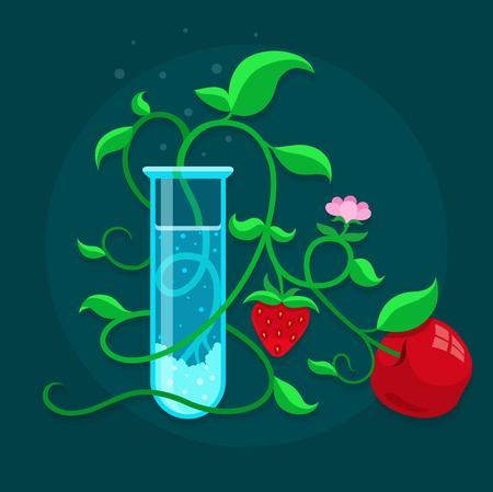 inquest: GMO genetically modified foods growing in test-tube. Eps10 vector illustration
