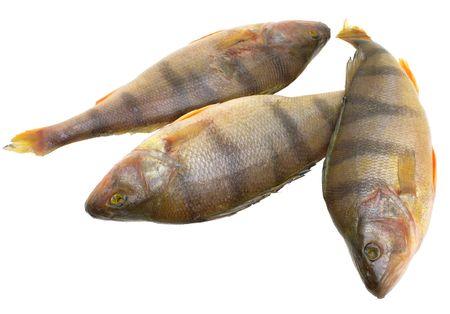 edible fish: Fresh, frozen perch, fresh edible fish on a white background.