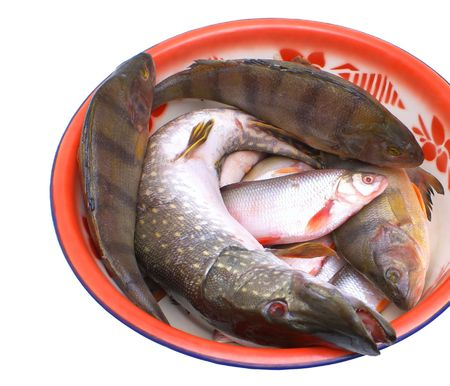 edible fish: Fresh edible fish in the plate on a white background.                     Stock Photo