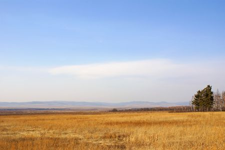 copse: Landscape - Spring, steppe and mountains on the horizon.