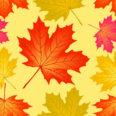 Seamless pattern autumn maple leaves. Vector