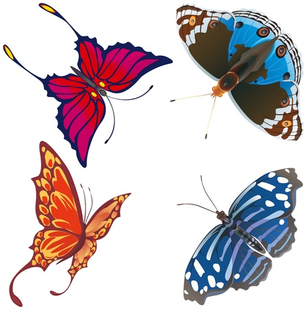 Exotic butterflies abstract Stock Vector - 20907046