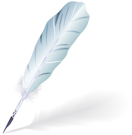 bristles: Goose feather Illustration