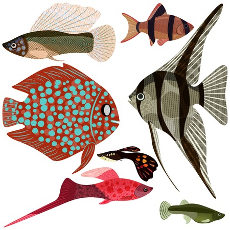Collection exotic aquarium fishes Vector