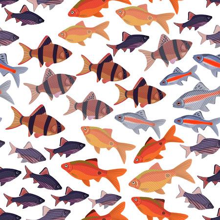 tetrazona: Seamless pattern fishes aquarium barbs Illustration