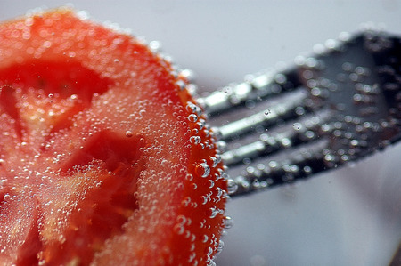 prong: crutch diet eat fork grey mineral nature plant prong red silver swim tomato vitamin water