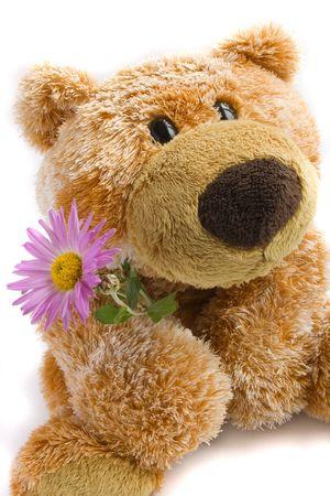 oso blanco: Juguete suave el oso con una flor en un fondo blanco