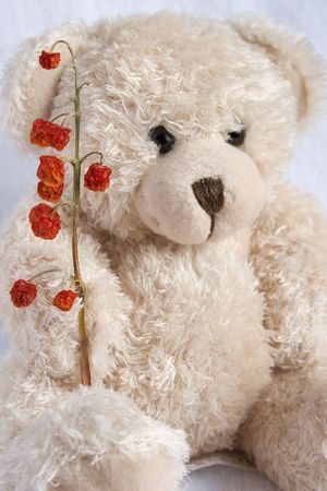 Soft toy the bear  with red berry on a white background  photo