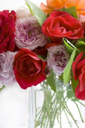 rosas naranjas: Ramo de rosas sobre un fondo blanco Foto de archivo