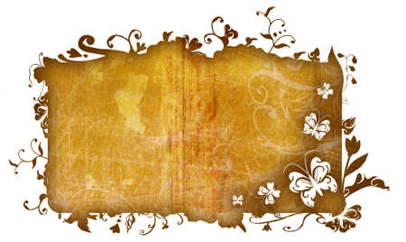 Grunge texture frame with nature flowers, swirls and butterfly detail for the edge is included Stock Photo