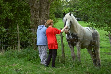 Two children petting a horse over a fence