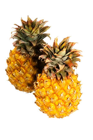 Tropical pineapple Stock Photo