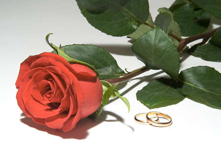 Wedding rings with one red rose photo