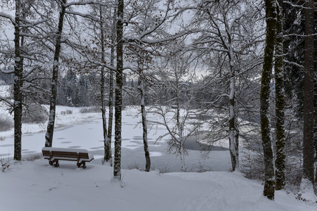 park bench and lake view snow