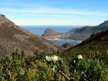 tranquillity: Hout Bay, a harbour on the Cape Peninsula, near Cape Town, South Africa.