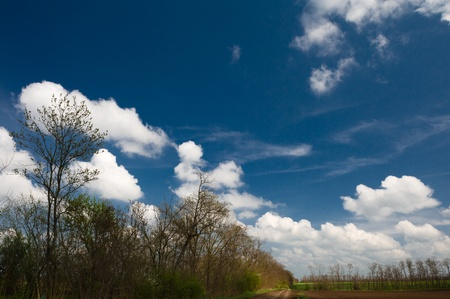 unpaved road: Unpaved road under the clouds