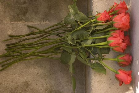 dozen: A dozen roses lying by a memorial for those who died in war