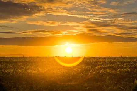 Long exposure shot of a beautiful sunrise  photo