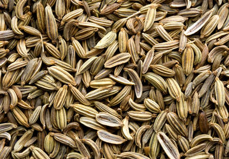 fennel seeds: Abstract of fennel seeds showing texture. Stock Photo