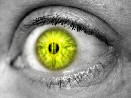 cilia: Yellow eye against black and white skin