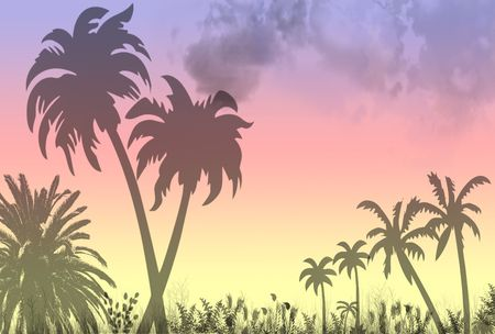 A tropical paradise Stock Photo - 344407