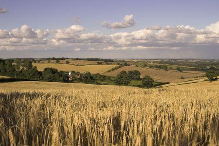 English Countryside In Nottinghamshire, England, U.K. Stock Photo