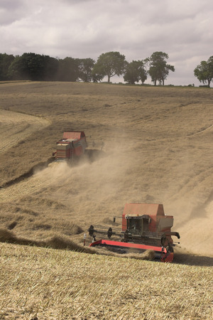 Combine Harvesters photo