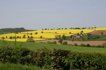 Farm And Surrounding Countryside