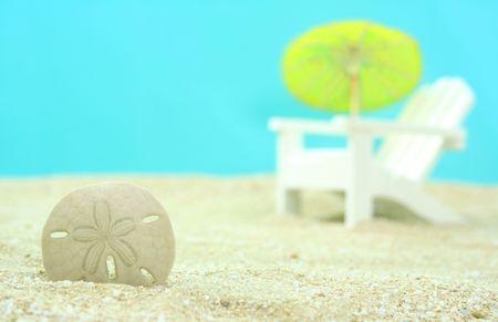 sand dollar: Sand Dollar and Beach Chair, Shallow DOF Stock Photo