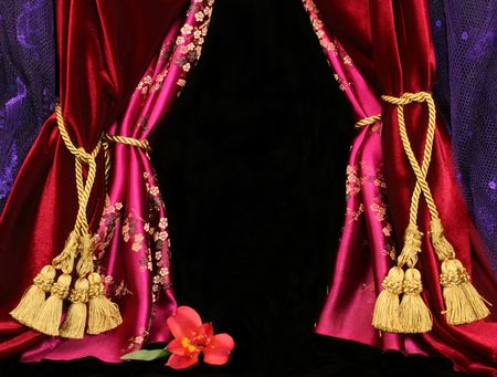 Drapes and Flower with Black Background