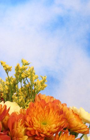 Fall Flowers on Blue Sky Background With Space For Text Stock Photo