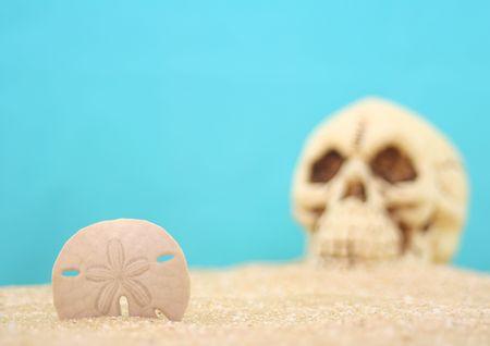 sand dollar: Sand Dollar And Skull on Sand With Blue Background. Shallow DOF, Focus on Sand Dollar