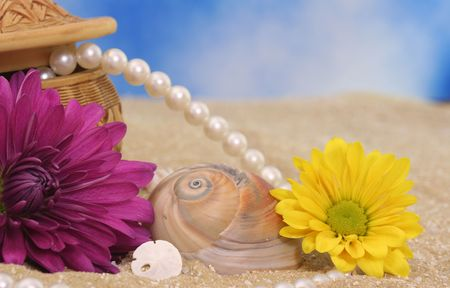 Sea Shells and Flowers with Pearls on Beach Stock Photo - 1117868