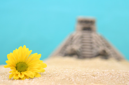 shallow dof: Flower and Pyramid on Sand With Blue Background. Shallow DOF Stock Photo