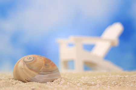 Sea Shell on Sand With Chair in Background, Shallow DOF
