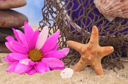 Starfish and Sea Shells on Sand With Flower and Fishing Net photo
