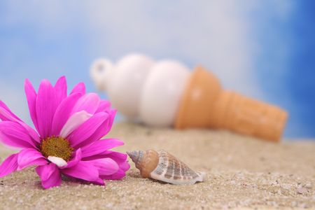 cone shell: Flower and Sea Shell on Sand With Ice Cream Cone, Shallow DOF