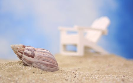 Sea Shell on Beach With Chair and Blue Sky Background, Shallow DOF