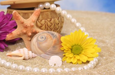 Flowers and Sea Shells on Sand, Shallow DOF