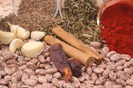 Garlic, Paprika, Pinto Beans and Other Spices Stock Photo - 3339862