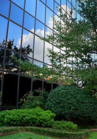 garden landscaping: Building With Cloud Reflection Stock Photo