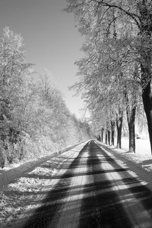 winter way Stock Photo - 318071