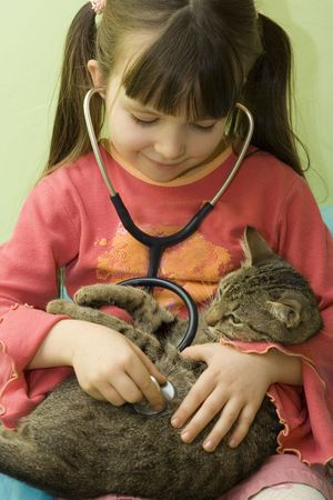 girl test her cat with stethoscope Stock Photo - 320414