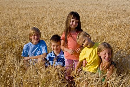 Family in cereal Stock Photo - 720867