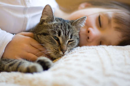 house pet: sleeping girl with cat